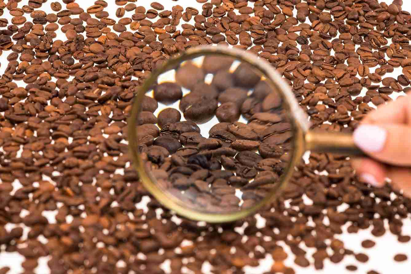 search coffee beans ireland